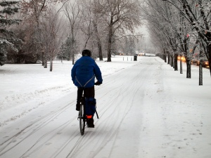 Vélo d'hiver urbain