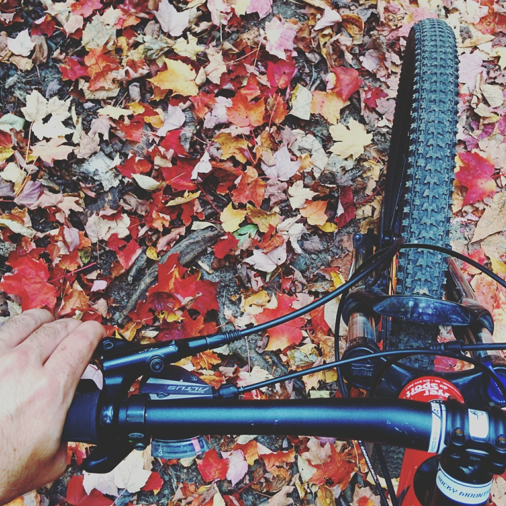 vélo de montagne Parc de la Gorge de Coaticook